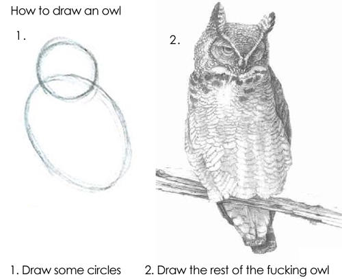 Draw the owl meme